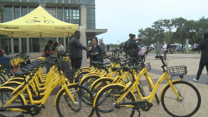 ofo bikes on bike racks