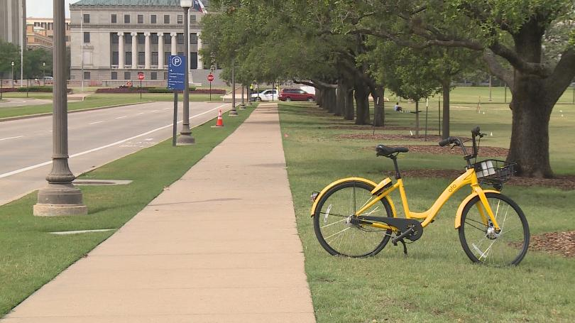 ofo bike parked on campus