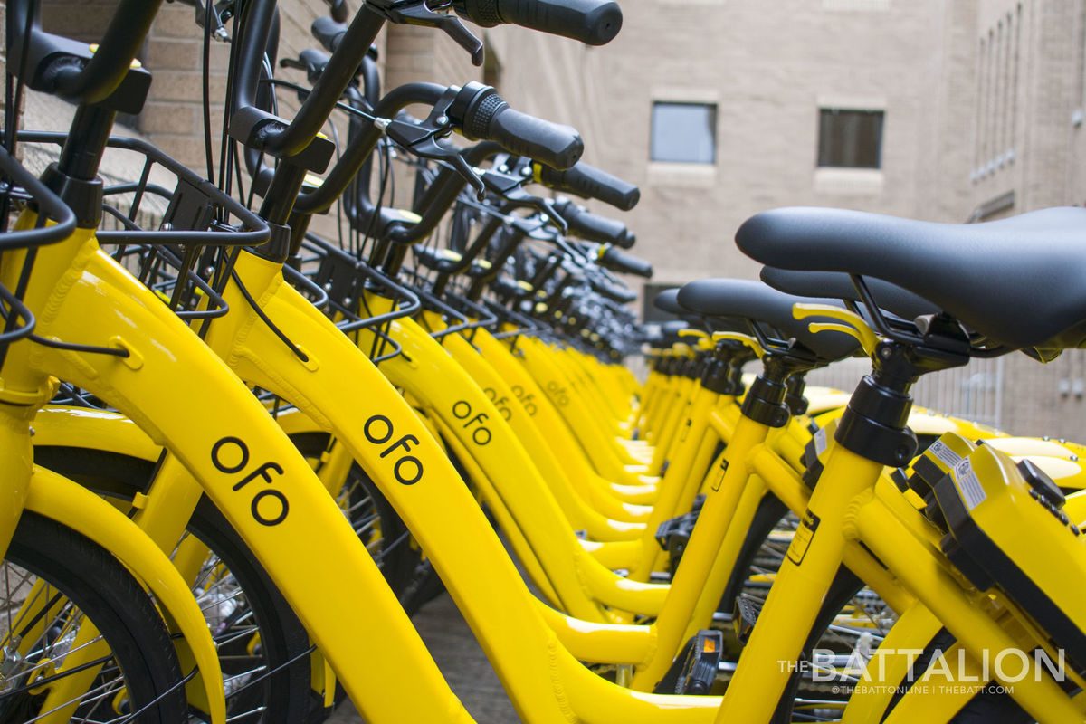 ofo bikes parked on campus