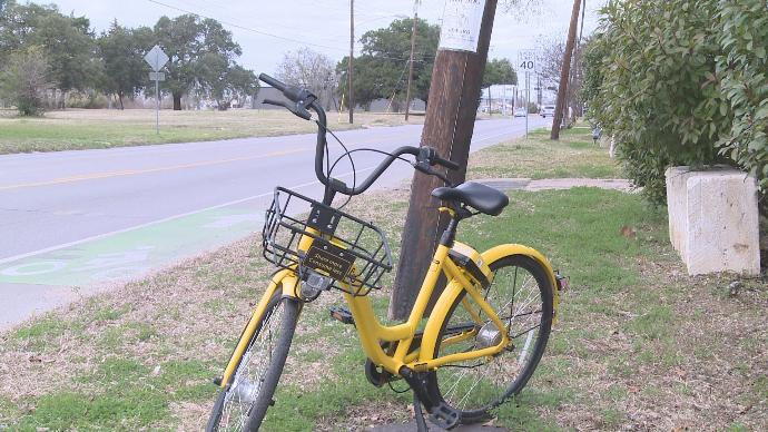 Ofo Bike on Campus